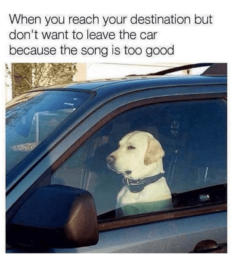 Vehicle door - When you reach your destination but don't want to leave the car because the song is too good