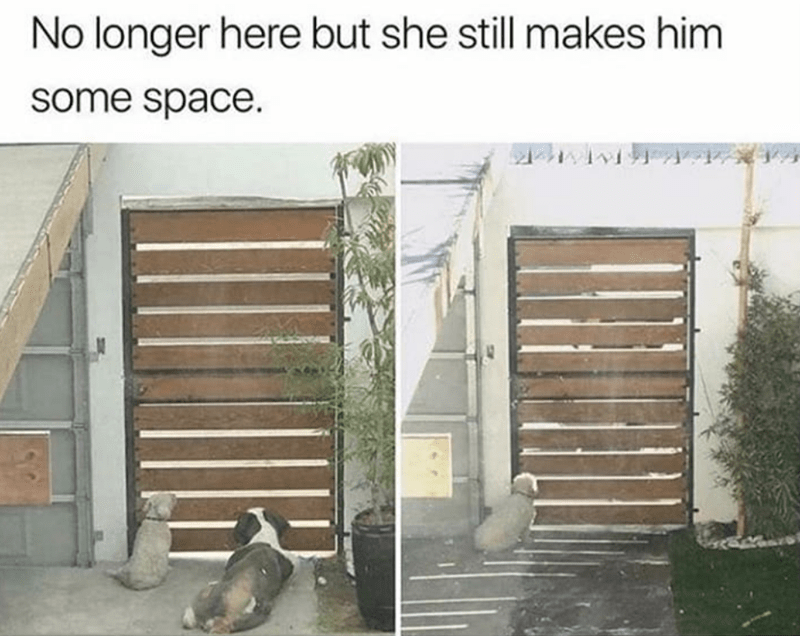Door - No longer here but she still makes him some space.