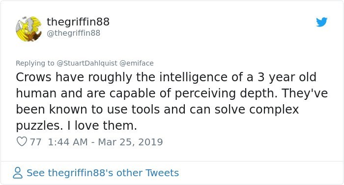 Text - thegriffin88 @thegriffin88 Replying to @StuartDahlquist @emiface Crows have roughly the intelligence of a 3 year old human and are capable of perceiving depth. They've been known to use tools and can solve complex puzzles. I love them. 77 1:44 AM - Mar 25, 2019 See thegriffin88's other Tweets
