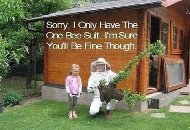 Property - Sorry, I Only Have The One Bee Suit. I'm Sure You'll Be Fine Though.