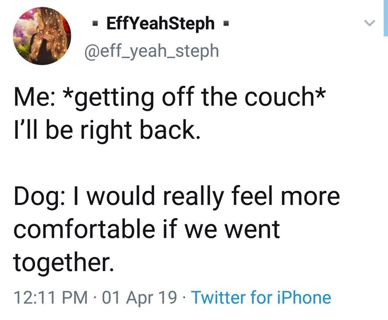 Text - EffYeahSteph @eff_yeah_steph Me: *getting off the couch* I'll be right back. Dog: I would really feel more comfortable if we went together. 12:11 PM 01 Apr 19 Twitter for iPhone