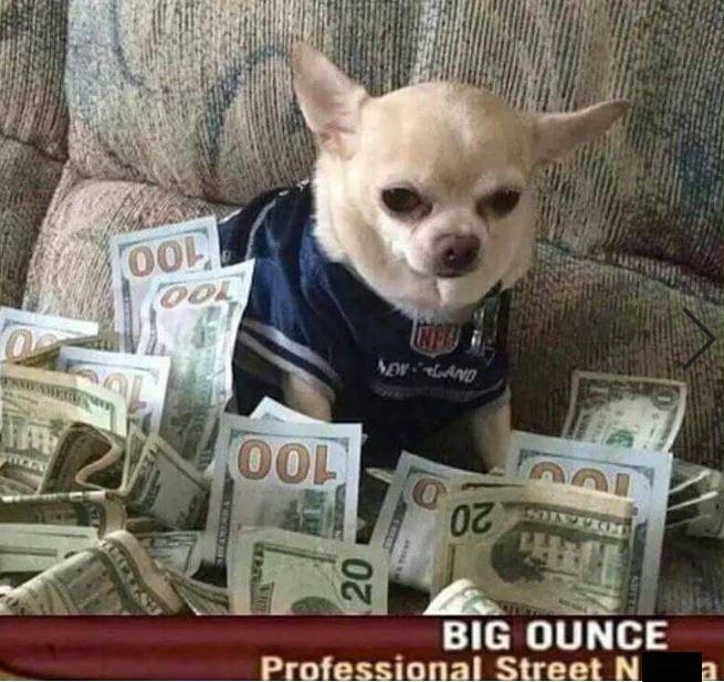 Canidae - OO0 OOL ONEA OOL 20 BIG OUNCE Professional Street N