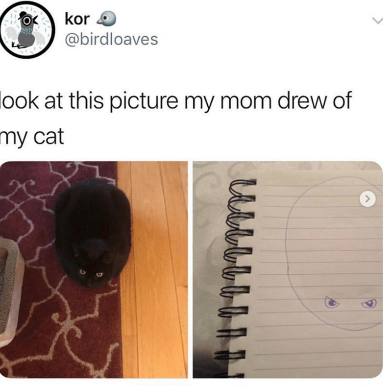 Product - kor @birdloaves look at this picture my mom drew of my cat