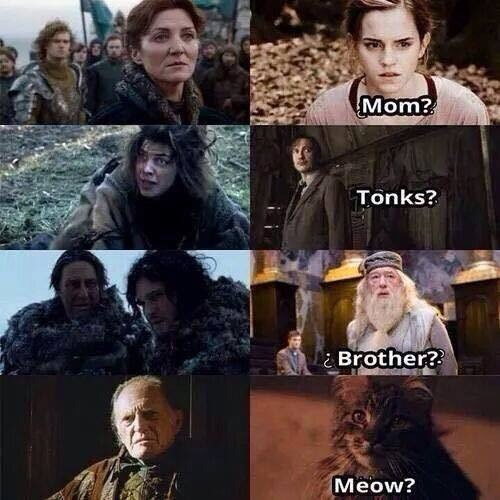 Facial expression - Mom? Tonks? Brother? Meow?