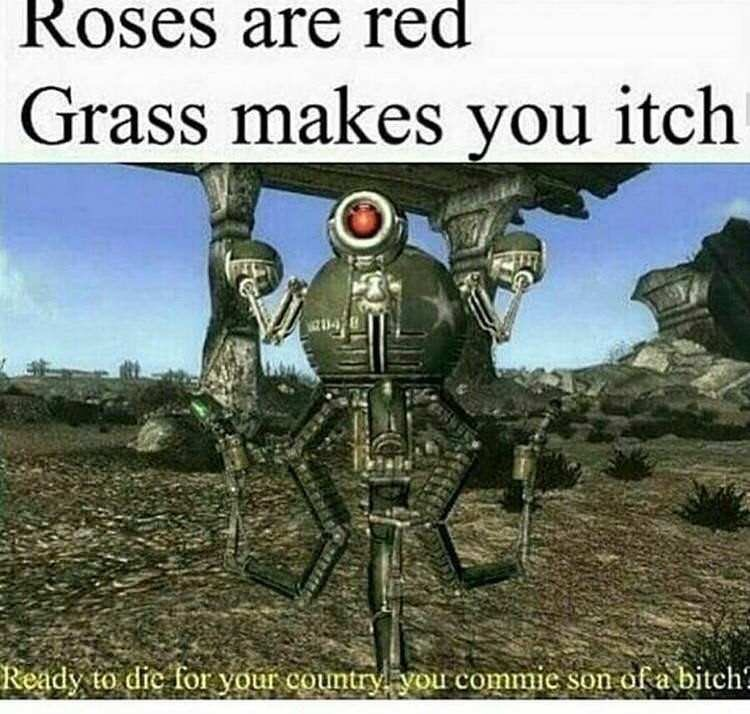 Photo caption - Roses are red Grass makes you itch Ready to die for your country you commie son of a bitch?
