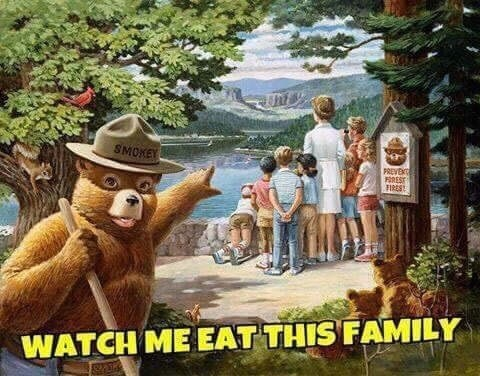 Animated cartoon - SMOKEY PREVEC FIREST FIRES WATCH ME EAT THIS FAMILY