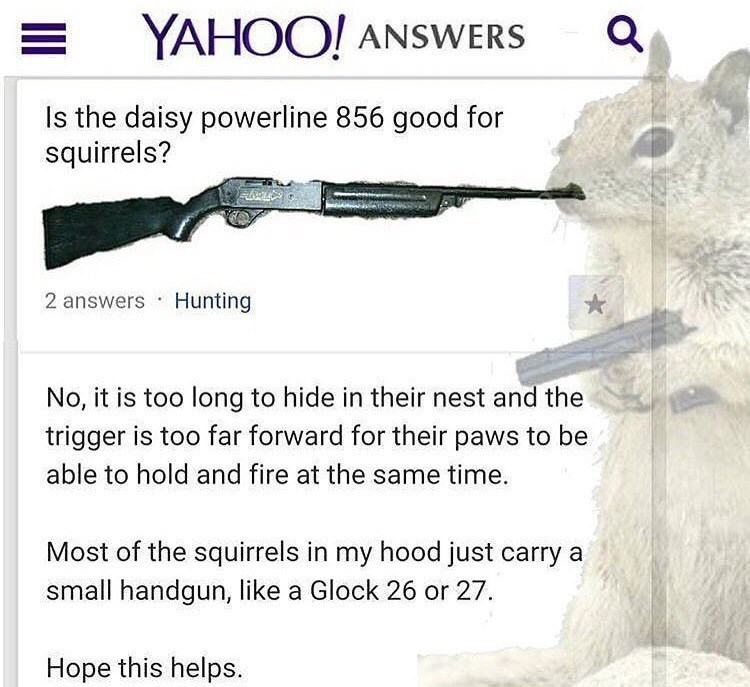 Text - YAHOO! ANSWERS the daisy powerline 856 good for squirrels? 2 answers Hunting No, it is too long to hide in their nest and the trigger is too far forward for their paws to be able to hold and fire at the same time. Most of the squirrels in my hood just carry a small handgun, like a Glock 26 or 27 Hope this helps.