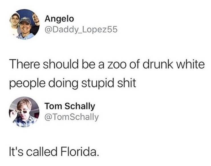 Text - Angelo @Daddy_Lopez55 There should be a zoo of drunk white people doing stupid shit Tom Schally @TomSchally It's called Florida