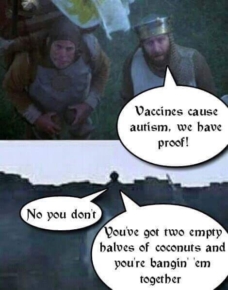 Cartoon - Vaccines cause autism, we bave proof! No you don't You've got two empty balves of coconuts and you're bangin em together