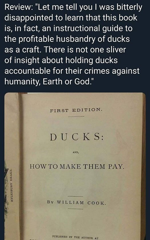 "Text - Review: ""Let me tell you I was bitterly disappointed to learn that this book is, in fact, an instructional guide to the profitable husbandry of ducks as a craft. There is not one sliver of insight about holding ducks accountable for their crimes against humanity, Earth or God."" FIRST EDITION DUCKS: AND, HOW TO MAKE THEM PAY B v WILLIAM COOK. PUBLISHED BY THE AUTHOR AT"