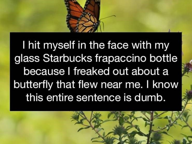 Butterfly - I hit myself in the face with my glass Starbucks frapaccino bottle because I freaked out about a butterfly that flew near me. I know this entire sentence is dumb.