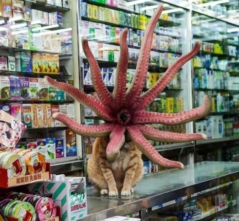 Supermarket - SURREALH
