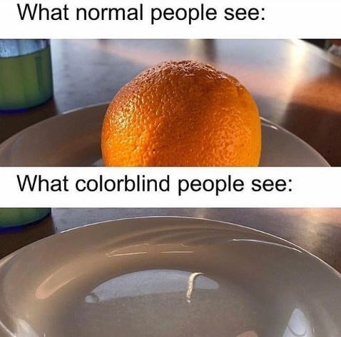 "Text that reads, ""What normal people see"" above a pic of an orange on a plate, above text that reads, ""What colorblind people see"" above a pic of an empty"