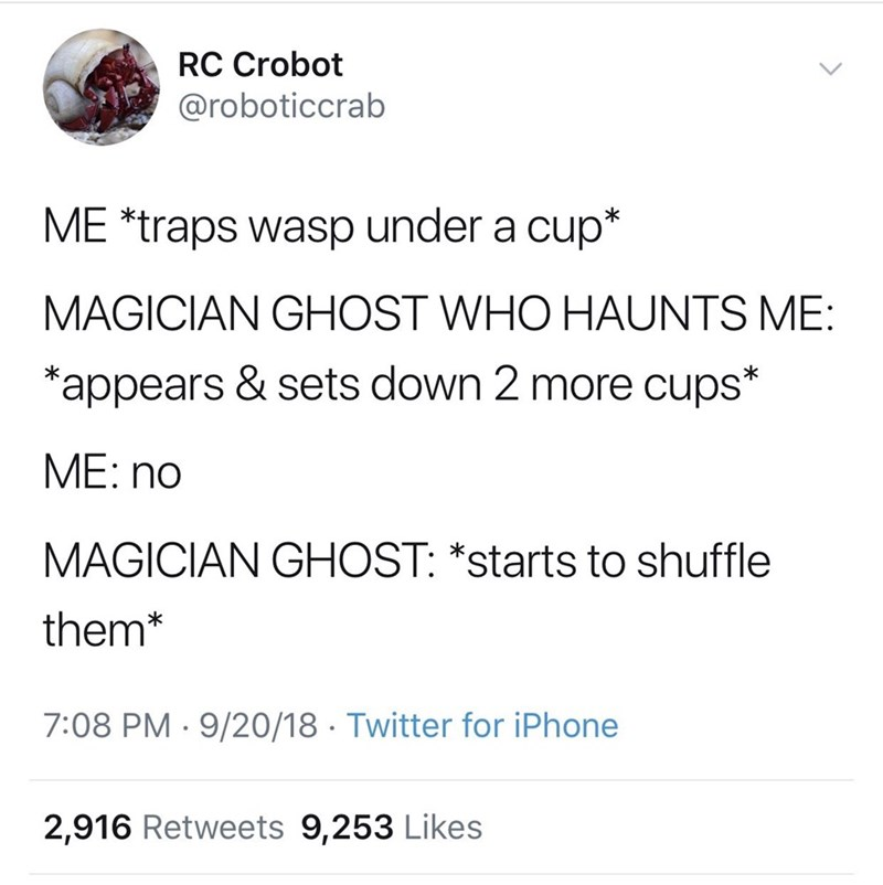 Text - RC Crobot @roboticcrab ME *traps wasp under a cup* MAGICIAN GHOST WHO HAUNTS ME: *appears & sets down 2 more cups* ME: no MAGICIAN GHOST: *starts to shuffle them* 7:08 PM 9/20/18 Twitter for iPhone 2,916 Retweets 9,253 Likes