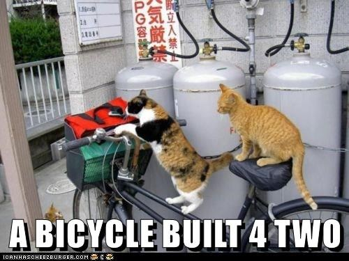 A BICYCLE BUILT 4 TWO