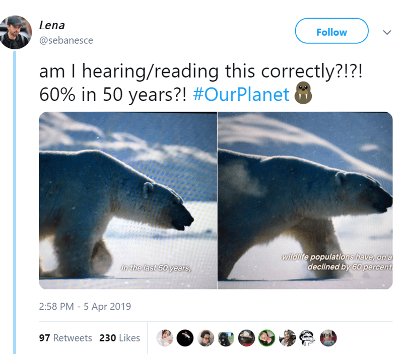 Wildlife - Lena Follow @sebanesce am I hearing/reading this correctly?!?! 60% in 50 years?! #OurPlanet wildlife populations have, on a declined by 60 percent in the last 50years 2:58 PM - 5 Apr 2019 97 Retweets 230 Likes >