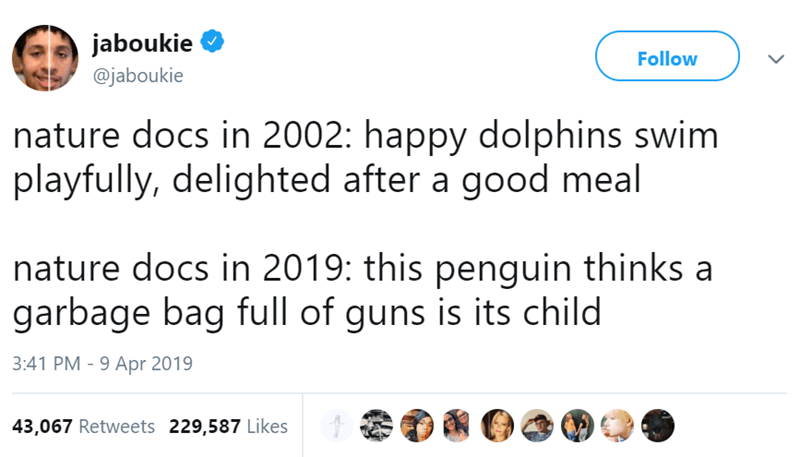 Text - jaboukie Follow @jaboukie nature docs in 2002: happy dolphins swim playfully, delighted after a good meal nature docs in 2019: this penguin thinks a garbage bag full of guns is its child 3:41 PM 9 Apr 2019 43,067 Retweets 229,587 Likes