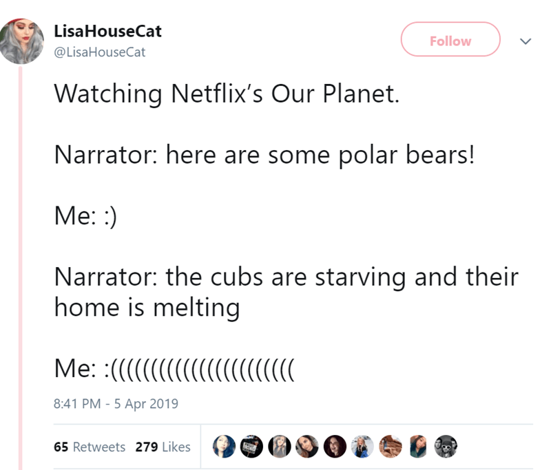 Text - Lisa HouseCat Follow @LisaHouseCat Watching Netflix's Our Planet. Narrator: here are some polar bears! Me: ) Narrator: the cubs are starving and their home is melting Me: :( ((C( 8:41 PM - 5 Apr 2019 65 Retweets 279 Likes Pa