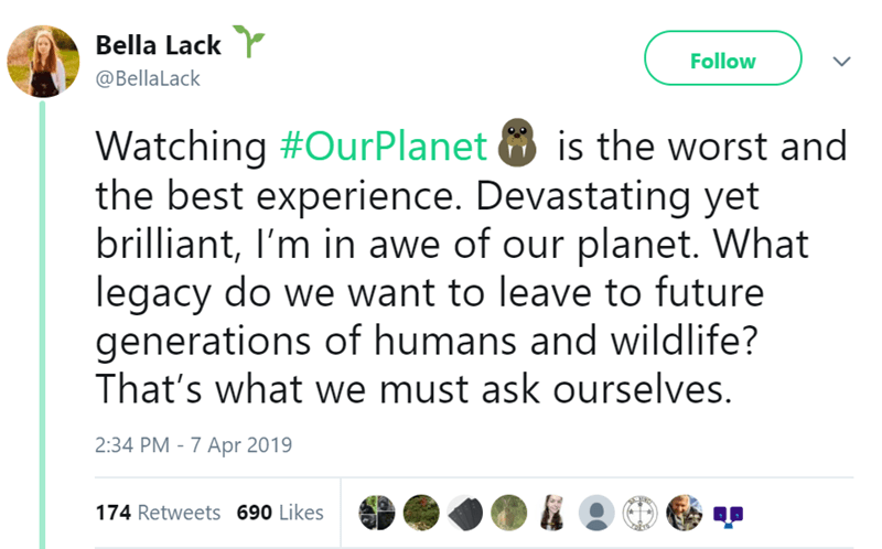 Text - Bella Lack Follow @BellaLack Watching #OurPlanet is the worst and the best experience. Devastating yet brilliant, I'm in awe of our planet. What legacy do we want to leave to future generations of humans and wildlife? That's what we must ask ourselves. 2:34 PM - 7 Apr 2019 174 Retweets 690 Likes