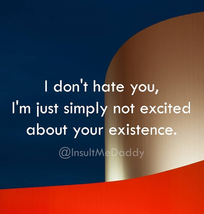 Text - I don't hate you, I'm just simply not excited about your existence. @InsultMeDaddy