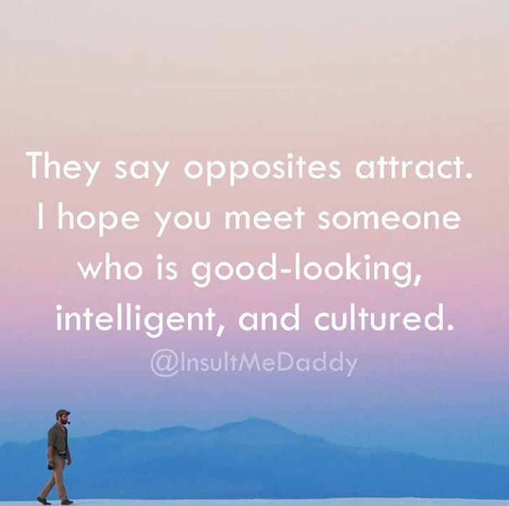 Text - They say opposites attract. T hope you meet someone who is good-looking, intelligent, and cultured. @InsultMeDaddy