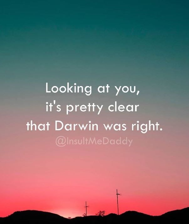 Sky - Looking at you, it's pretty clear that Darwin was right. @InsultMeDaddy