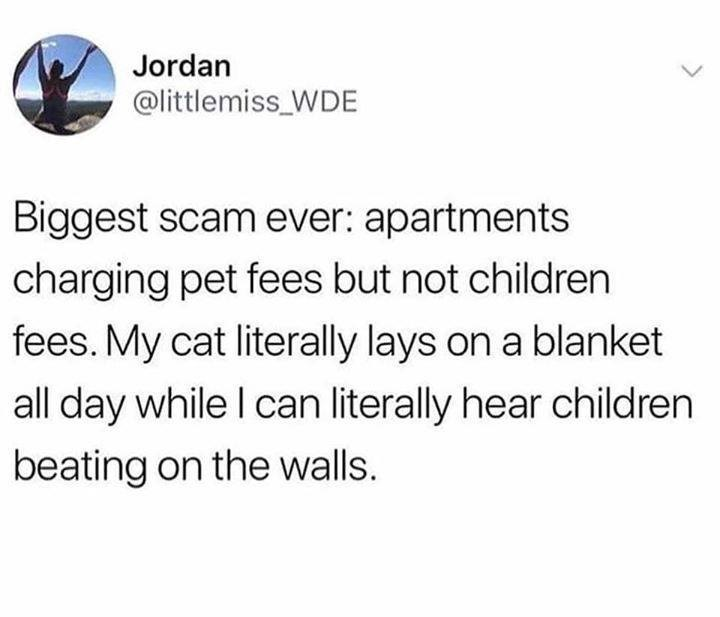 Text - Jordan @littlemiss_WDE Biggest scam ever: apartments charging pet fees but not children fees. My cat literally lays on a blanket all day while I can literally hear children beating on the walls.