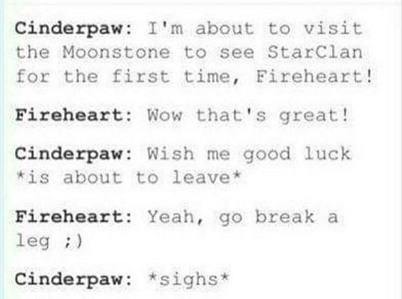 Text - Cinderpaw: I'm about to visit the Moonstone to see StarClan for the first time, Fireheart! Fireheart: Wow that's great! Cinderpaw: Wish me good 1uck is about to leave Fireheart: Yeah, go break a leg Cinderpaw: sighs*