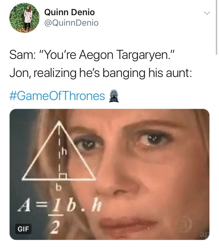 "Face - Quinn Denio @QuinnDenio Sam: ""You're Aegon Targaryen."" Jon, realizing he's banging his aunt #GameOfThrones b A =1 b.h 2 GIF ap"