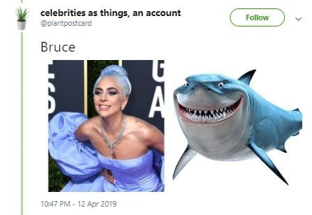Fish - celebrities as things, an account @plantpostcard Follow Bruce A 10:47 PM 12 Apr 2019