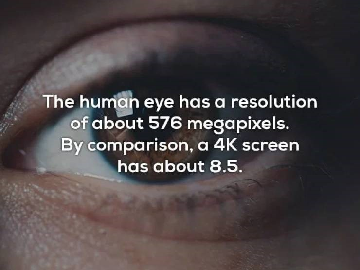 Skin - The human eye has a resolution of about 576 megapixels. By comparison, a 4K screen has about 8.5.