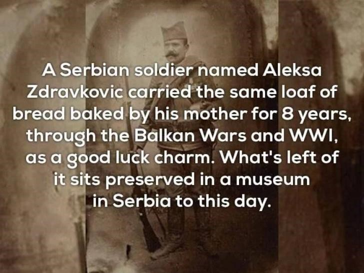 Text - A Serbian soldier named Aleksa Zdravkovic carried the same loaf of bread baked by his mother for 8 years, through the Balkan Wars and WWI, as a good luck charm. What's left of it sits preserved in a museum in Serbia to this day.