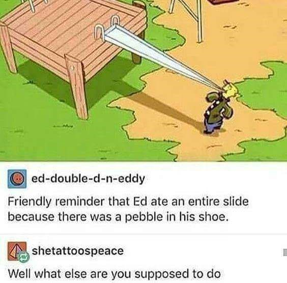 meme - Cartoon - ed-double-d-n-eddy Friendly reminder that Ed ate an entire slide because there was a pebble in his shoe. shetattoospeace Well what else are you supposed to do