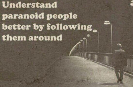 meme - Text - Understand paranoid people better by following, them around