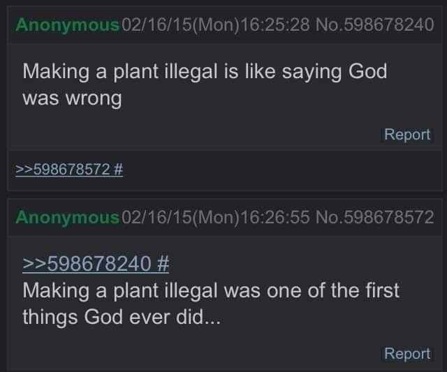 literal joke - Text - Anonymous 02/16/15(Mon)16:25:28 No.598678240 Making a plant illegal is like saying God was wrong Report >>598678572 # Anonymous 02/16/15(Mon)16:26:55 No.598678572 >>598678240 # Making a plant illegal was one of the first things God ever did... Report