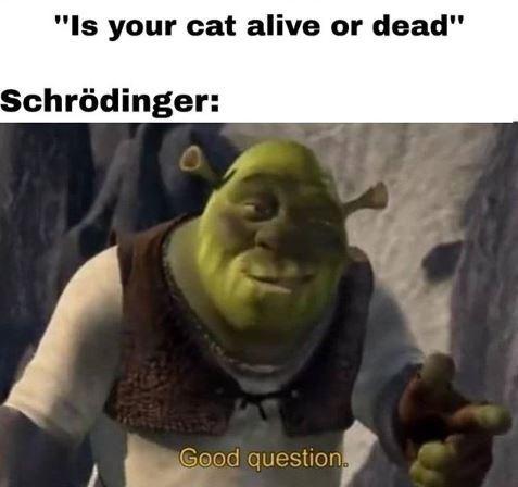 """Shrek """"good question"""" meme about Schrodinger's cat"""