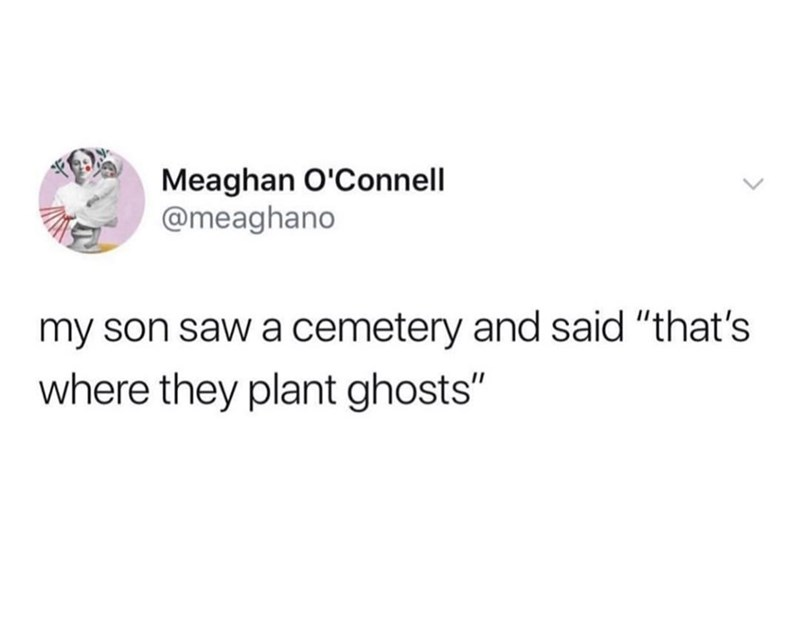 """Text - Meaghan O'Connell @meaghano my son saw a cemetery and said """"that's where they plant ghosts"""""""