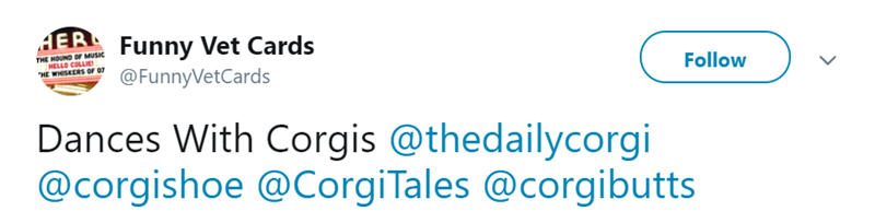 Text - ERFunny Vet Cards THE HOUND OF MUSIC MELLO COLLIE HE WHISKERS OF 07 Follow @FunnyVetCards Dances With Corgis @thedailycorgi @corgishoe @CorgiTales @corgibutts