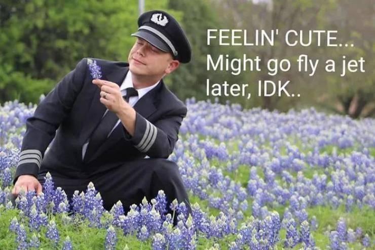 meme - Bluebonnet - FEELIN' CUTE... Might go fly a jet later, IDK..