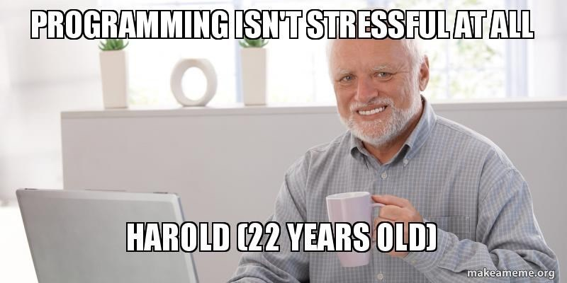 Text - PROGRAMMING SNT STRESSFULAT ALL HAROLD 22 YEARS OLDD makeameme.org