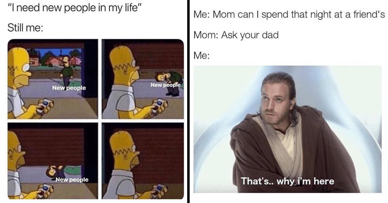 Funny random memes, school memes, animal memes, cat memes, dog memes, marvel memes, thanos.