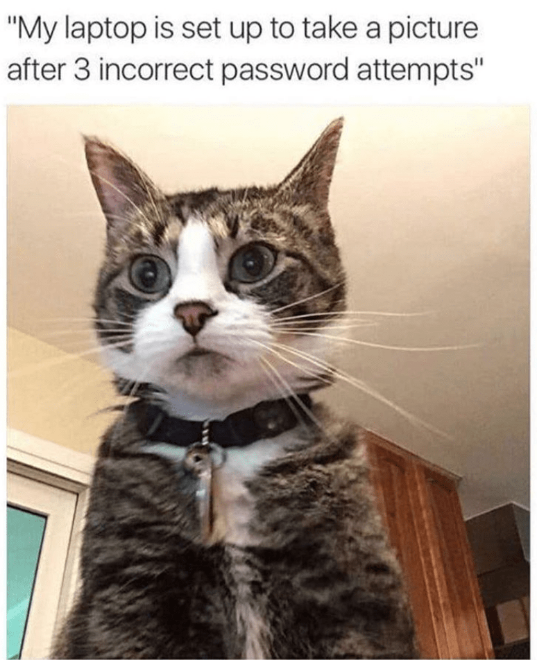 """Cat - """"My laptop is set up to take a picture after 3 incorrect password attempts"""""""