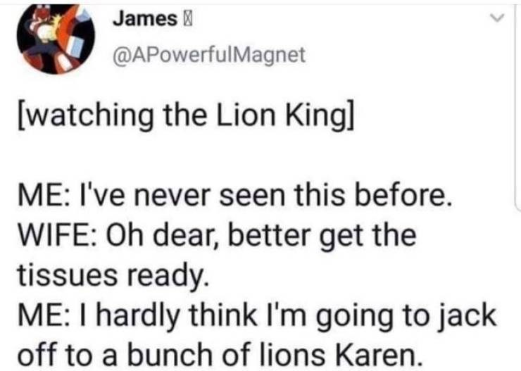 Text - James @APowerfulMagnet [watching the Lion Kingl ME: I've never seen this before. WIFE: Oh dear, better get the tissues ready. ME: I hardly think I'm going to jack off to a bunch of lions Karen.