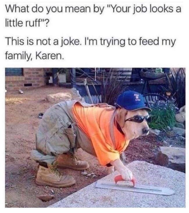 """meme - Adaptation - What do you mean by """"Your job looks a little ruff""""? This is not a joke. I'm trying to feed my family, Karen."""