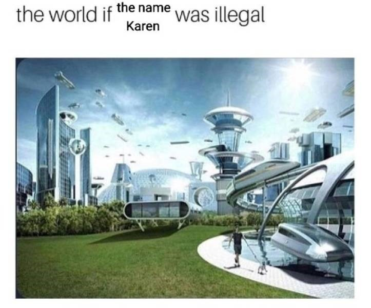 meme - Architecture - the world if the name was illegal Karen