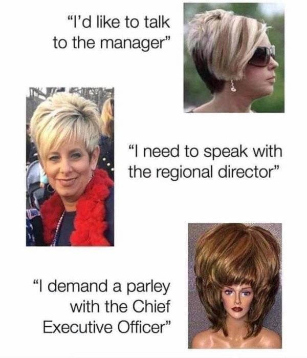 """meme - Hair - """"I'd like to talk to the manager"""" """"I need to speak with the regional director"""" """"I demand a parley with the Chief Executive Officer"""""""