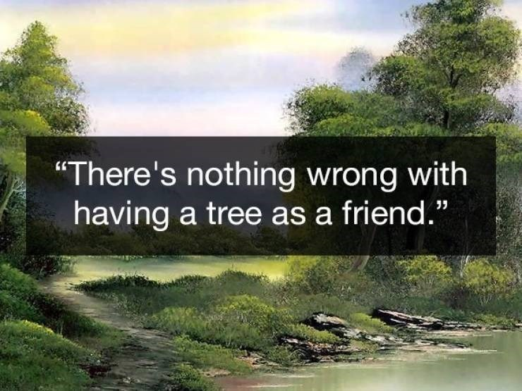 Wholesome Bob Ross quotes about befriending a tree