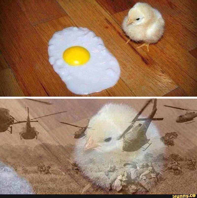 Easter meme of a chick looking at a fried egg