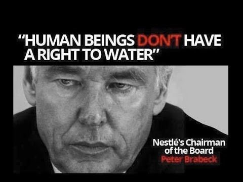 """Text - """"HUMAN BEINGS DONT HAVE ARIGHT TO WATER"""" Nestle's Chairman of the Board Peter Brabeck"""