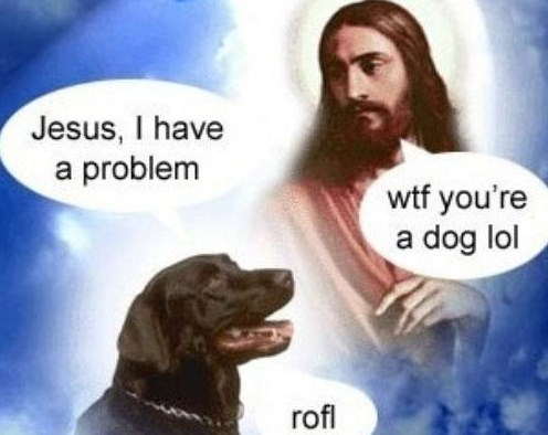 dank memes - Canidae - Jesus, I have a problem wtf you're a dog lol rofl
